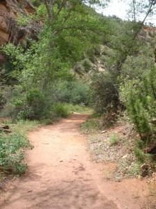 Mica Mine Trail