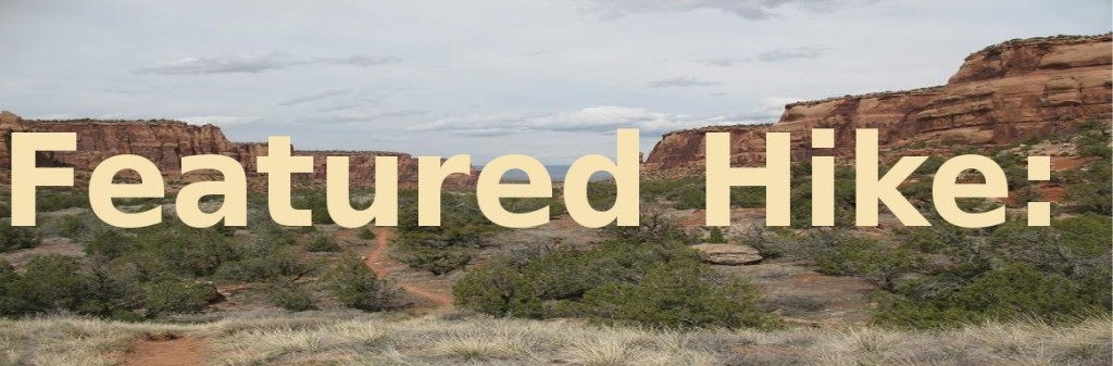 """This weeks """"Featured Hike"""" is: Goldstar Canyon. Click above to read all about it."""