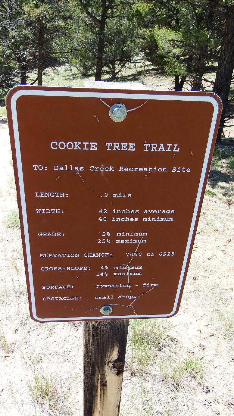 Cookie_Tree_Trail1