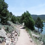 Cookie_Tree_Trail11